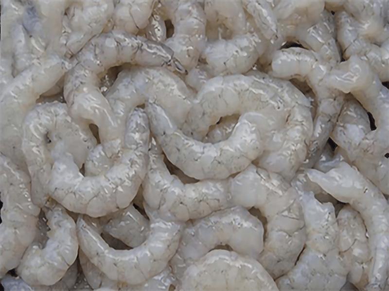 Sea Harina Head Less Shell on Raw PUD Shrimp